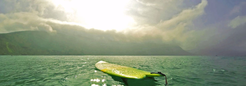 Free-Surfer-01